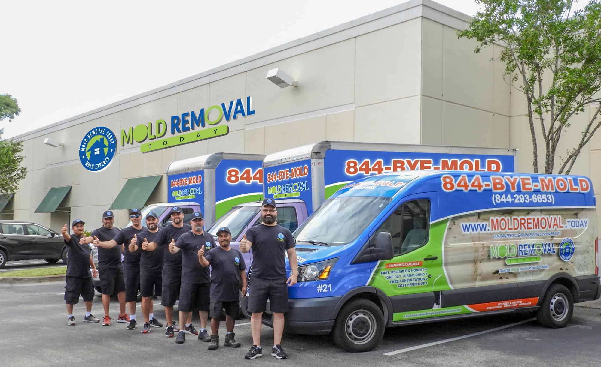 mold-removal-in-miami-florida